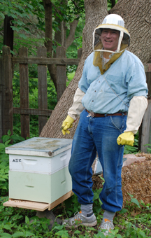 Ben working his bees