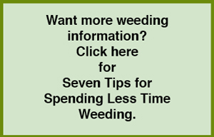 LInk to our weeding page